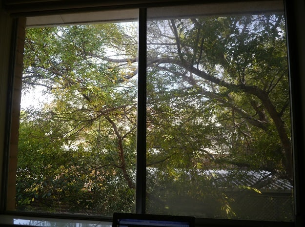 View from office window