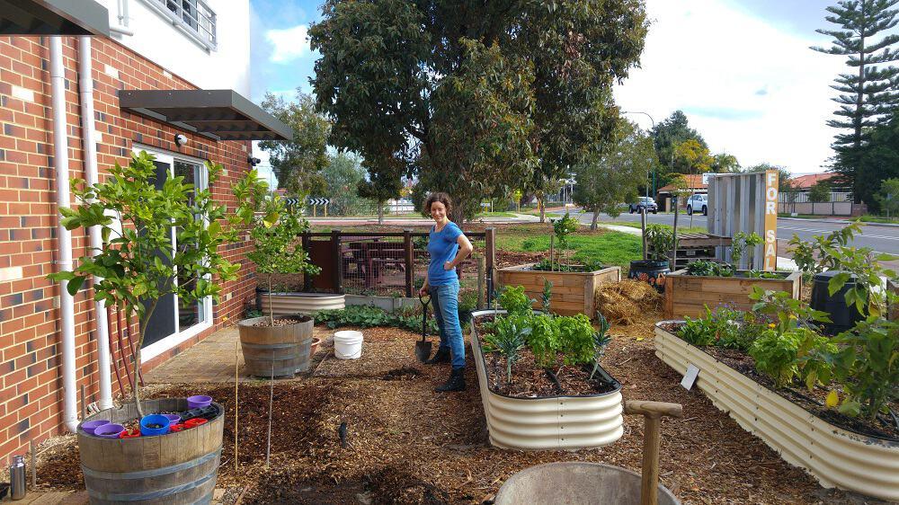 Lindsay Miles Treading My Own Path Zero Waste Gardening
