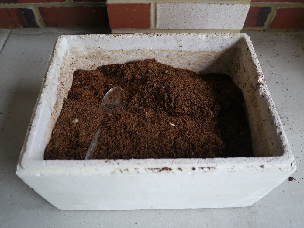 Repurposed Polystyrene Box Plastic Free Gardening Zero Waste Gardening