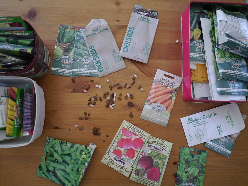 Seed Saving and Seed Sharing Zero Waste Gardening Treading My Own Path