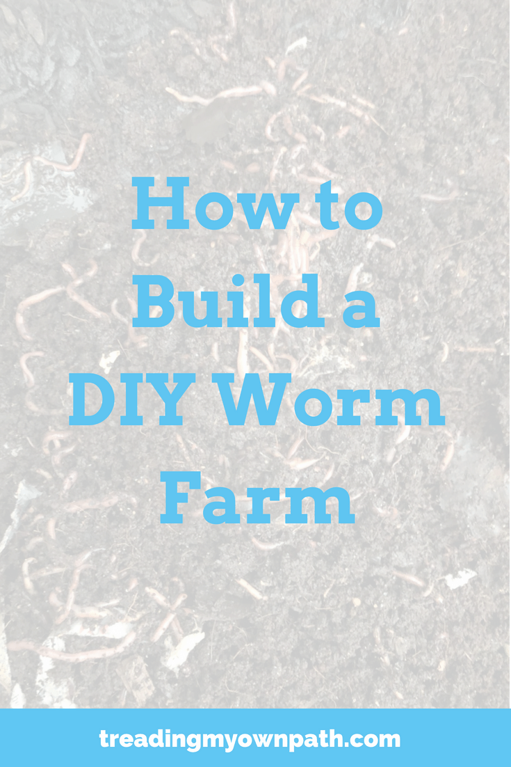 How to Build a DIY Worm Farm
