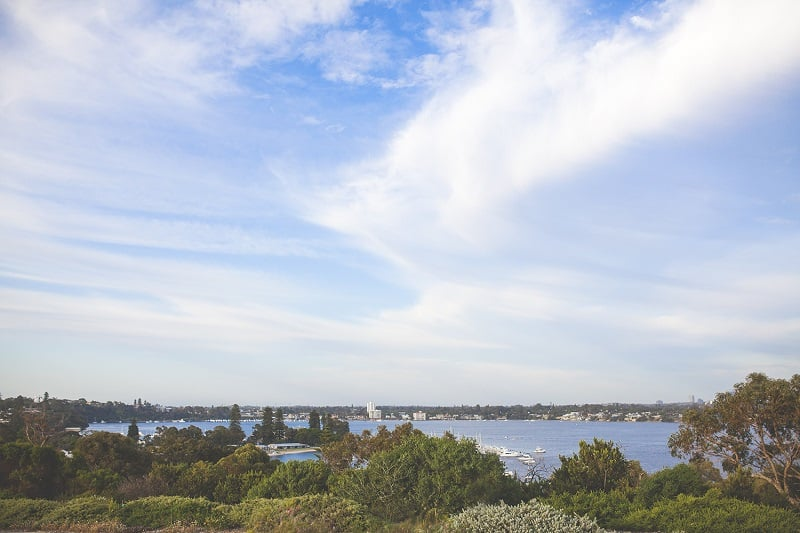 View From Edge of Mosman Park Bowling Club