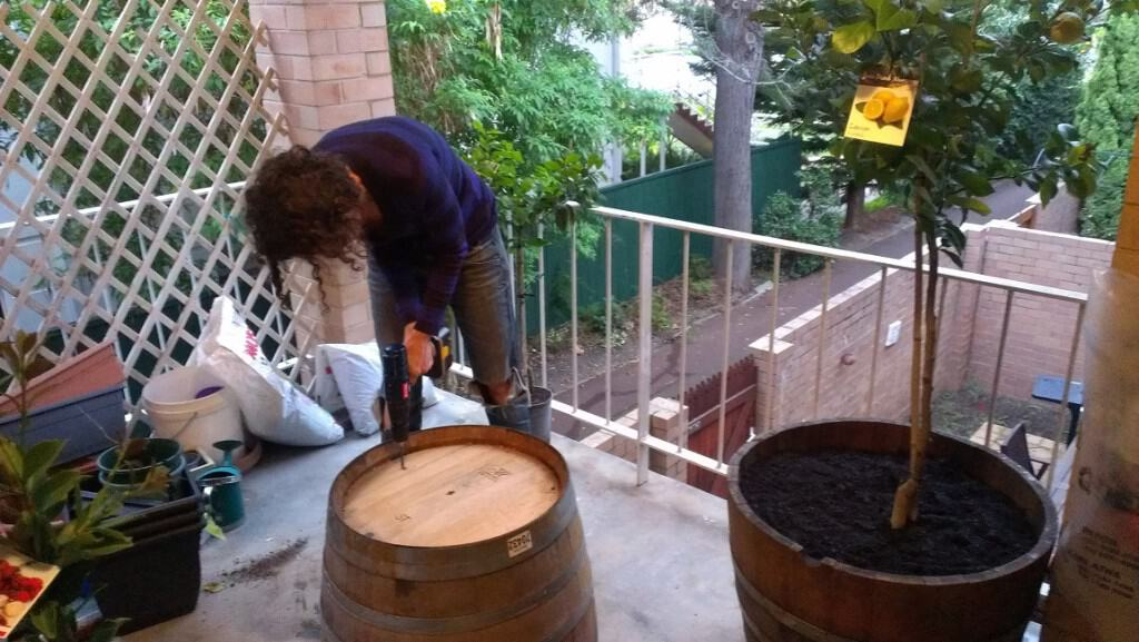 Drilling Wine Barrels2