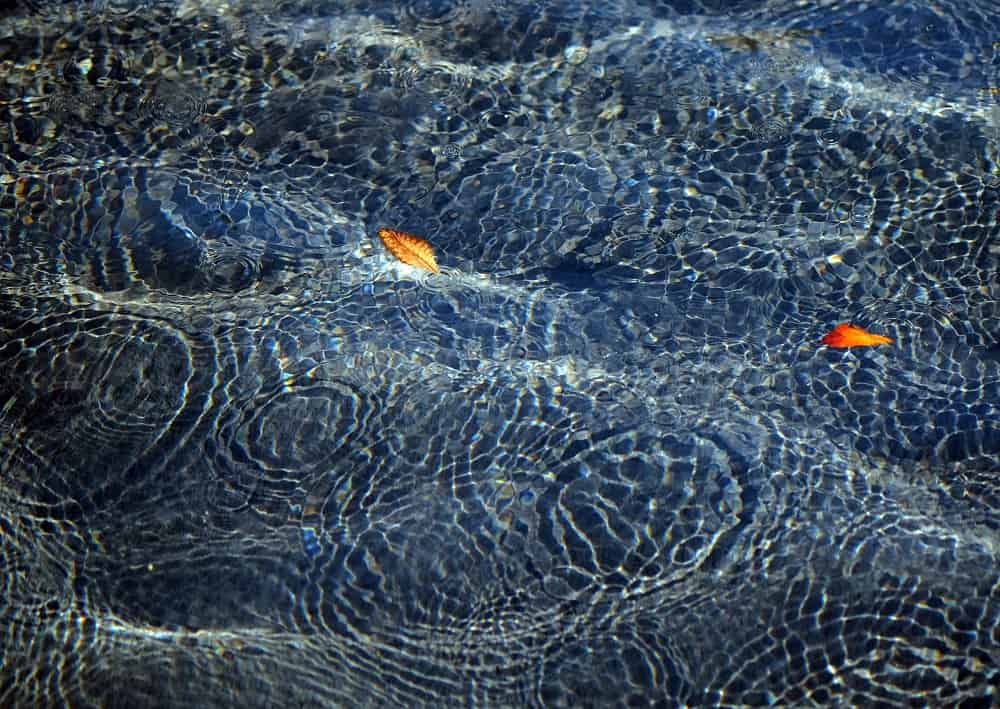 The Magic of Making Ripples