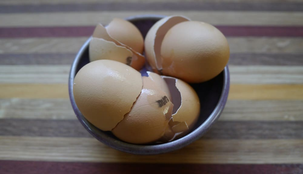 Zero Waste Week Reuse Egg Shells
