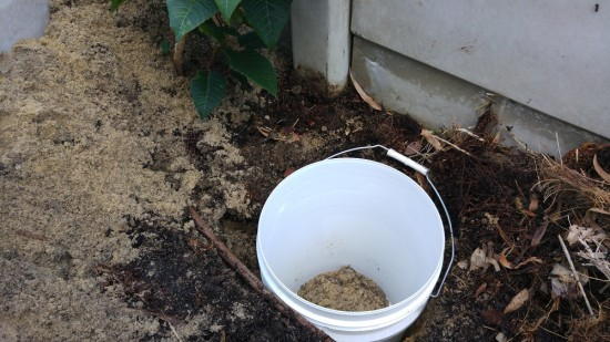 Digging In DIY Dog Poo Worm Farm