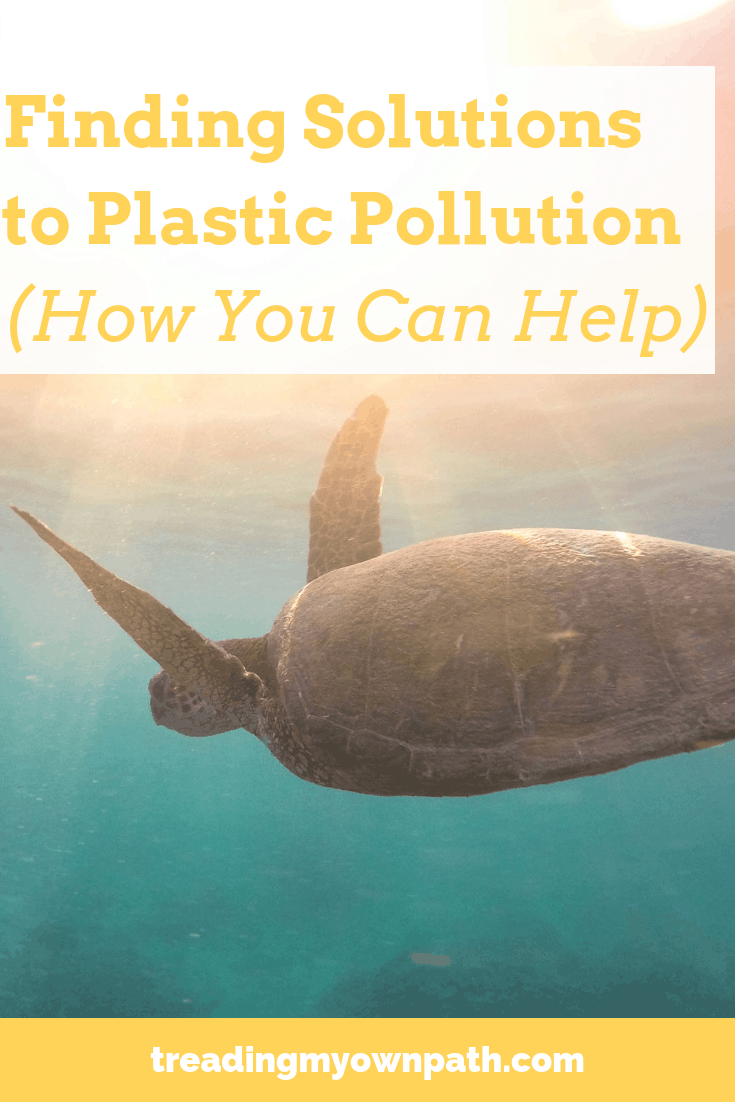 Finding Solutions to Plastic Pollution (How You Can Help)