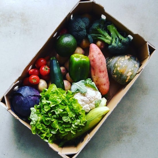 Organic Collective Veg Box Treading My Own Path