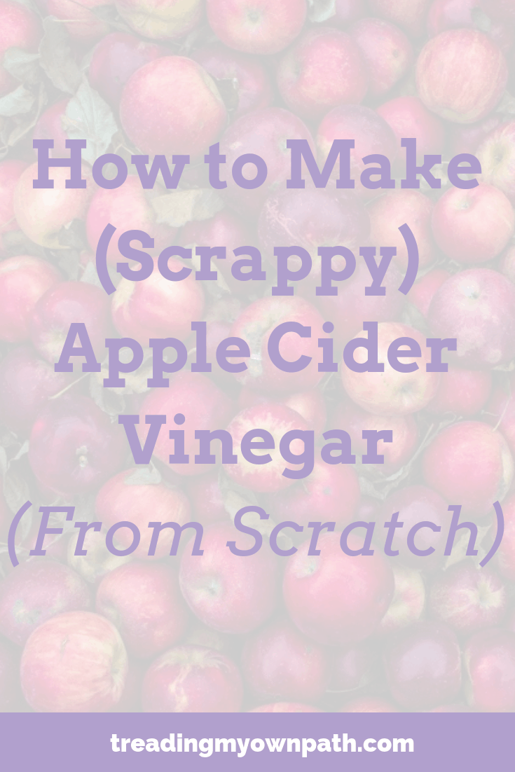 How to Make (Scrappy) Apple Cider Vinegar From Scratch | Treading My Own Path | Zero Waste + Plastic-Free Living. Apple cider vinegar recipe, DIY apple cider vinegar, apple scraps vinegar, what to do with leftover apple juicer pulp, zero waste kitchen, reduce waste in the kitchen, make your own vinegar, make vinegar from waste, reduce waste, eco living ideas, green living ideas. Love food hate waste. More at https://treadingmyownpath.com