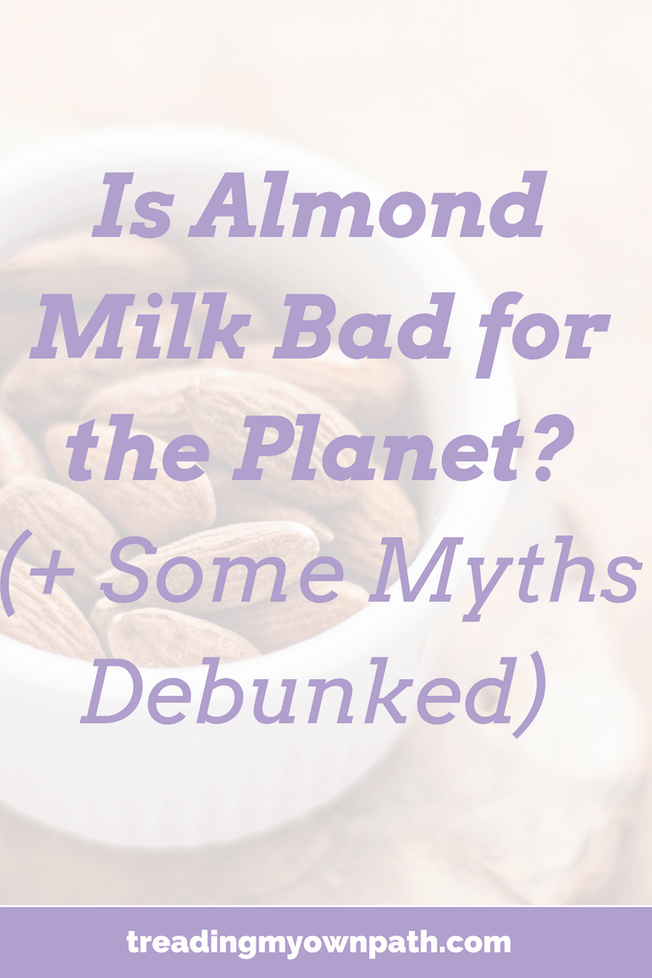 Is Almond Milk Bad for the Planet? (+ Some Myths Debunked) from Treading My Own Path | Zero waste + plastic-free living | Less waste, less stuff, sustainable living. Plant based zero waste, is nut milk sustainable, Californian almonds, dairy free, are plant milks eco friendly, nut milk recipe, reduce your impact, eco-friendly swaps, green living, plastic-free milk, buy milk without plastic. More at https://treadingmyownpath.com