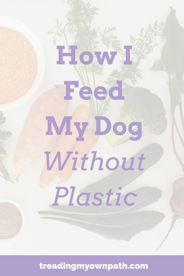 How I Feed My Dog Without Plastic