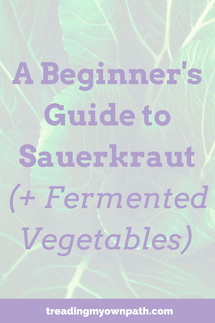 A Beginner's Guide to Sauerkraut (+ Fermented Vegetables)