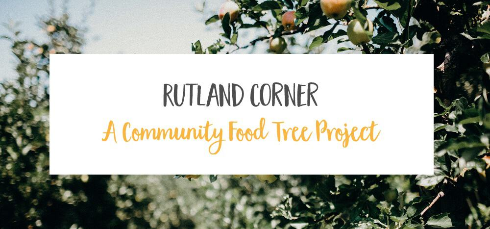 How We Started an Urban Food Tree Project