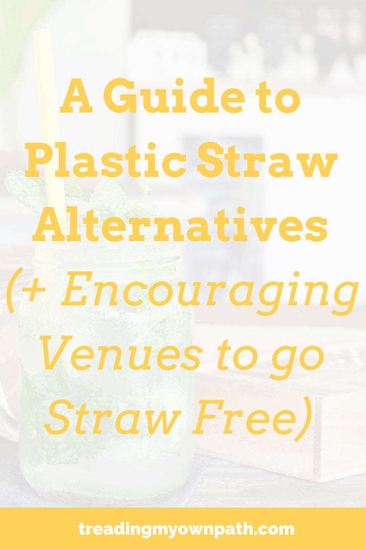 A Guide to Plastic Straw Alternatives (+ Encouraging Venues to go Straw Free) from Treading My Own Path | Zero Waste + Plastic-Free Living | Less waste, less stuff, sustainable living. One of the top 10 items found in litter pick-ups and beach clean-ups is plastic straws. To reduce our plastic footprint, tackling plastic straws is an easy first step. Whether it\'s zero waste reusables or plastic-free single use alternatives, there\'s plenty of solutions. More at https://treadingmyownpath.com