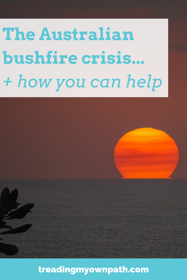 The Australian bushfire crisis and how you can help, from Treading My Own Path | Zero waste + plastic-free | Less waste, less stuff, sustainable living. Climate action, taking action for climate change, sustainable living, green living, sustainableish, eco-friendly choices, build community, wildfire donations, how to help Australia, save the koala, save the kangaroo, wildlife rescue. More at https://treadingmyownpath.com