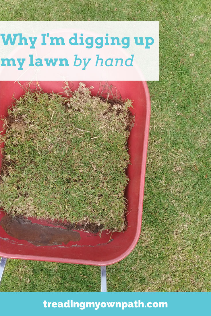My garden transformation project: why I\'m digging out my lawn by hand