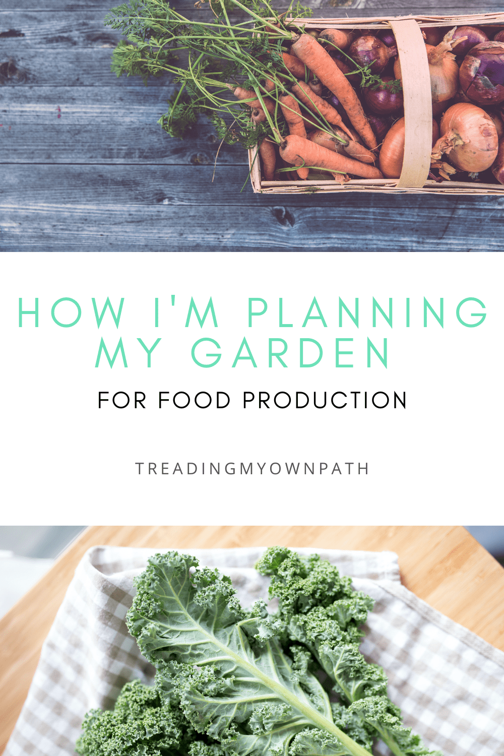 How I\'m planning my garden for food production