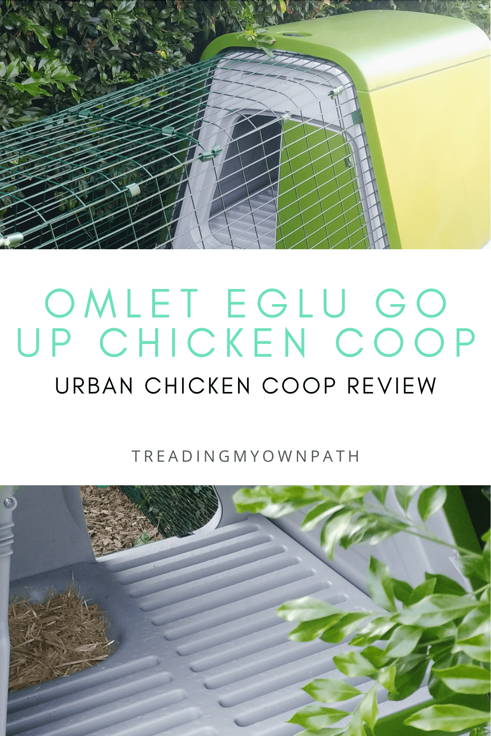 Keeping chickens: an Omlet Eglu Chicken Coop Review